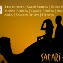 Desert Safari Trip with BBQ Dinner Buffet and Entertainment